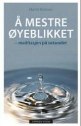 """""""Å mestre øyeblikket – meditasjon på sekundet"""", Martin Boroson (Omslag hentet fra Cappelen Damm.)"""